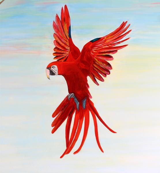 роспись стен москва попугай