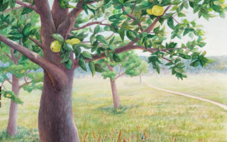 Appletree painting watercolor